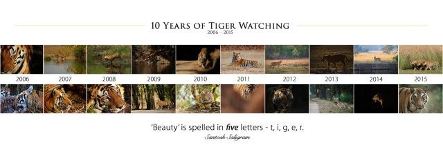 10th 'Tigging Anniversary' Poster, © Santosh Saligram